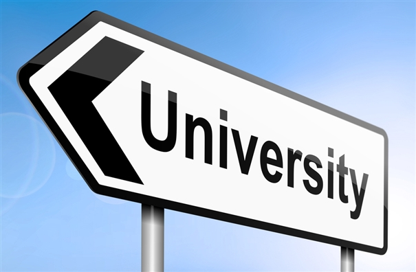 Government to set up universities in every district and to provide Career Counseling