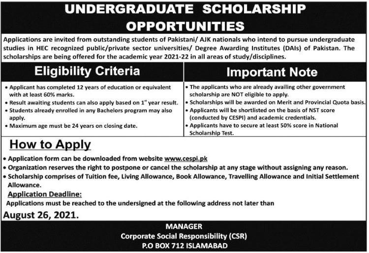 Cespi Undergraduate Scholarship